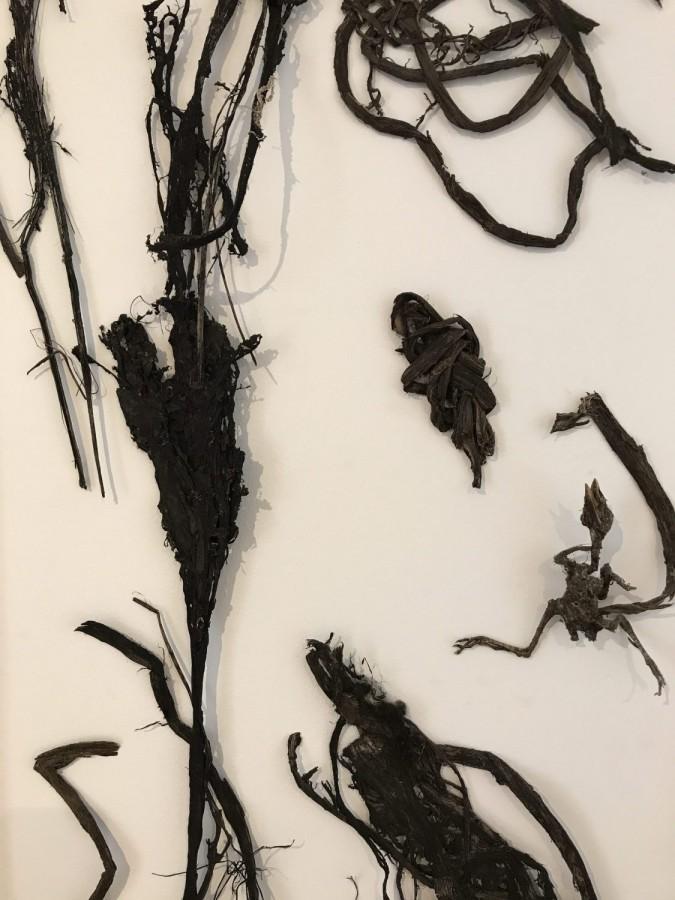 Detail, John Olsen